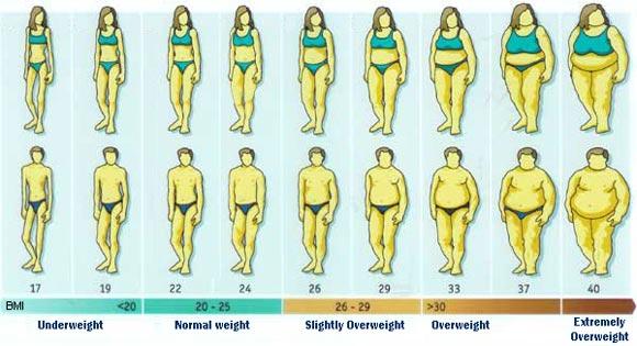 BMI Range Chart